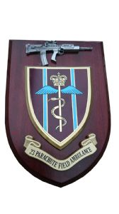 23 Parachute Field Ambulance Regiment + Pewter SA80 Military Wall Plaque